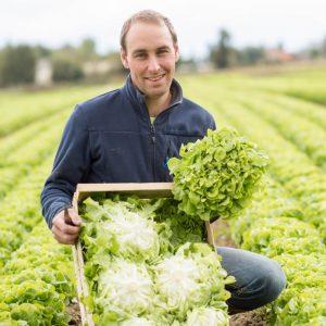 producteur de salades locales et légumes