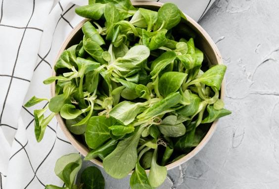 Salade 4ème gamme